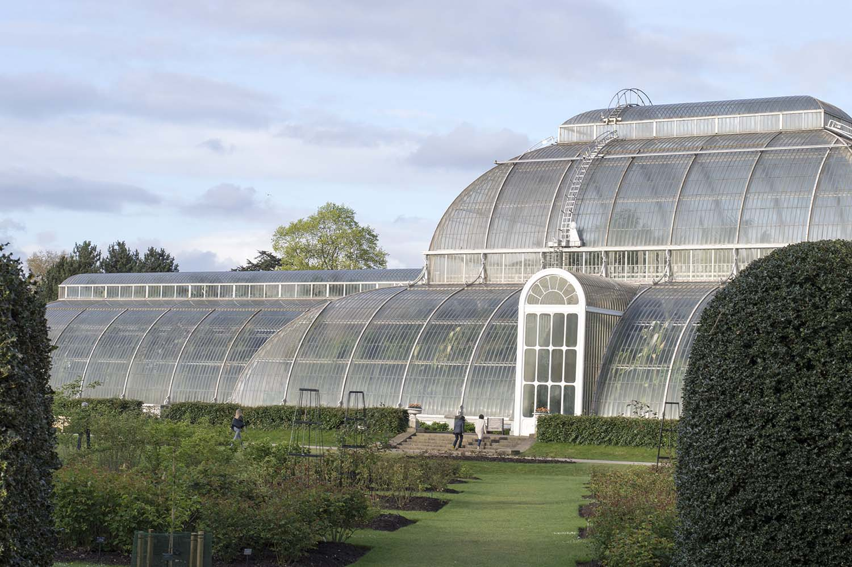 palm-house-kew-gardens