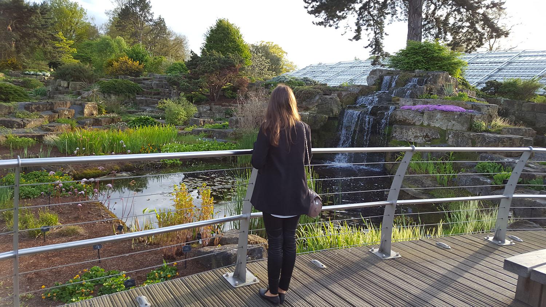 waterfall-kew-gardens
